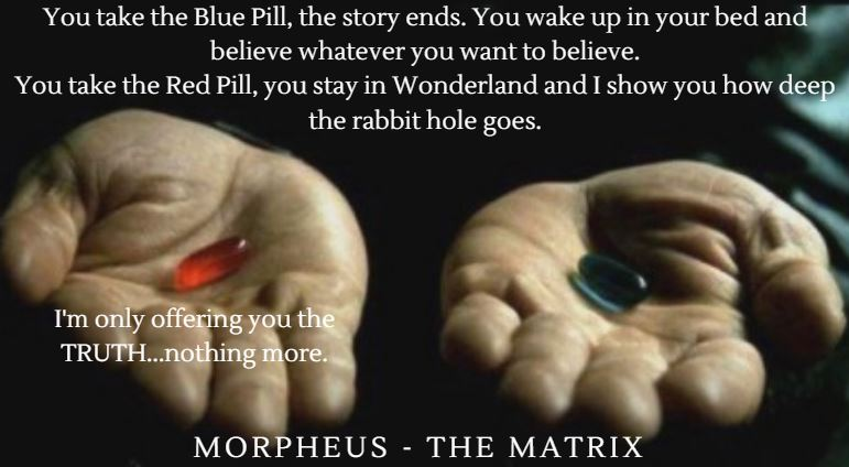 The-Metaphor-of-the-Red-Pill